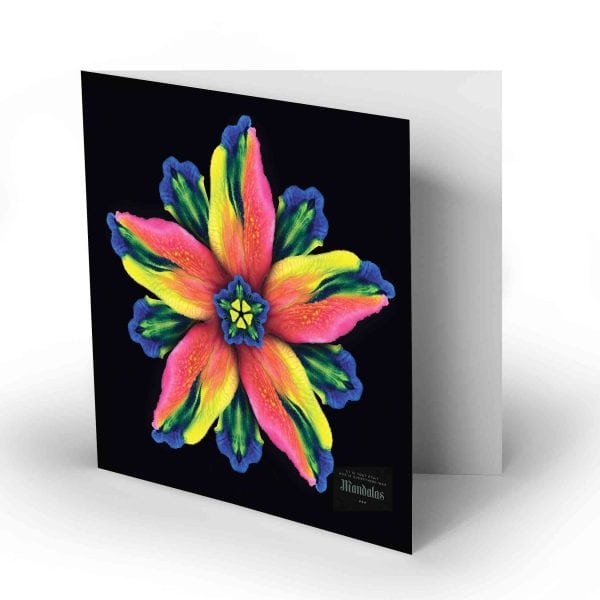 Greeting Card – Higher State of Joy